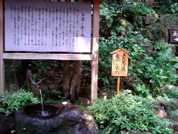 2007yumoto204