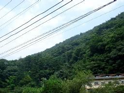 2007yumoto206