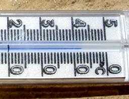 2007egypt50602