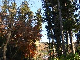 2007kamakura106