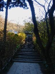 2007kamakura130