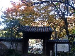 2007kamakura205