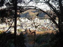 2007kamakura248