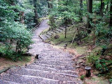 Kyoto229