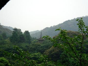 Kyoto242