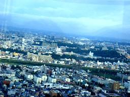 Shirokuma111