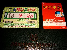Shirokuma127