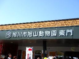 Shirokuma203