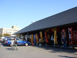 Shirokuma251