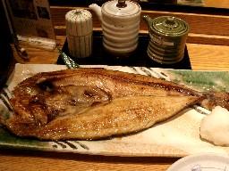 Shirokuma282