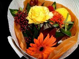 photo/birthflower1